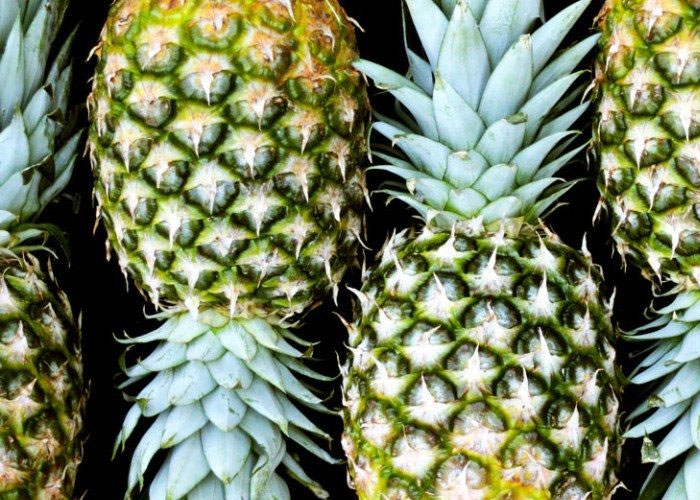 Pineapple for Abortion