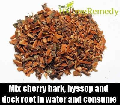 cherry bark, hyssop and dock root