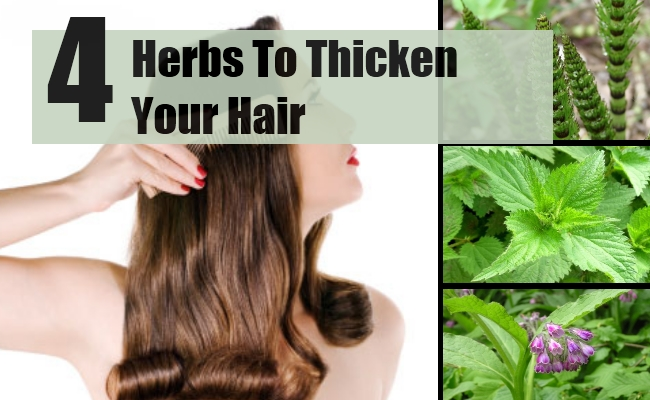 Thicken Your Hair