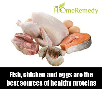 Fish, chicken and eggs