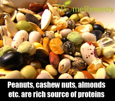 Seed And Nut