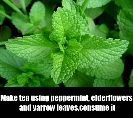 Peppermint and Elder flowers