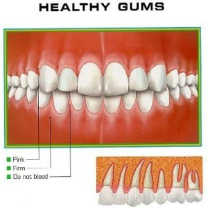 Vitamins for healthy gums