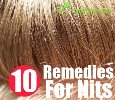 10 Home Remedies For Nits Natural Treatments Amp Cure For