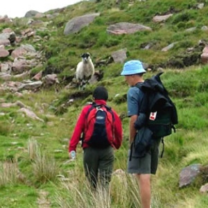 Top 14 Benefits Of Walking And Hiking For Fitness And Well Being