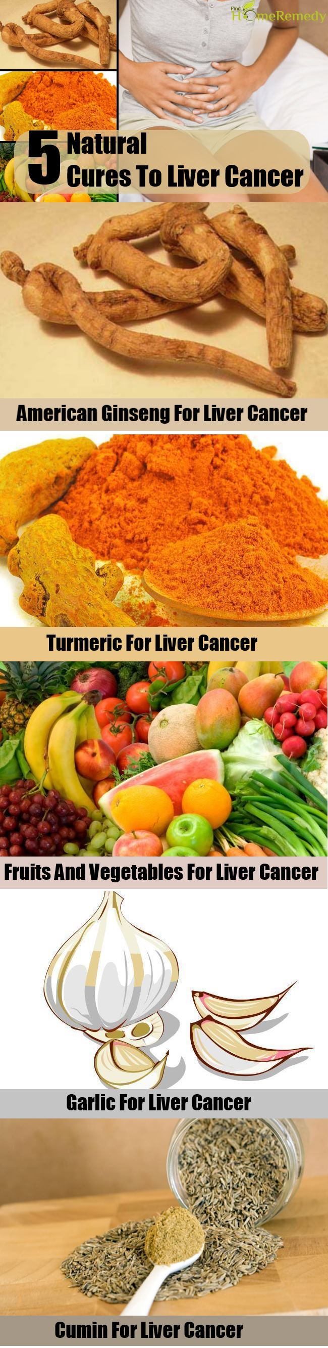 Cancer herbal liver treatment - 5 Natural Cure To Liver Cancer
