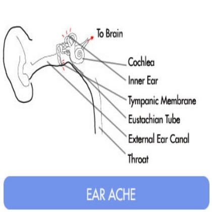 Effective Home Remedies For Earache
