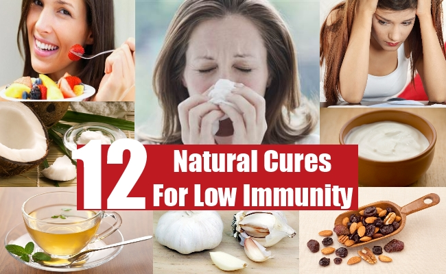 Natural Cures For Low Immunity