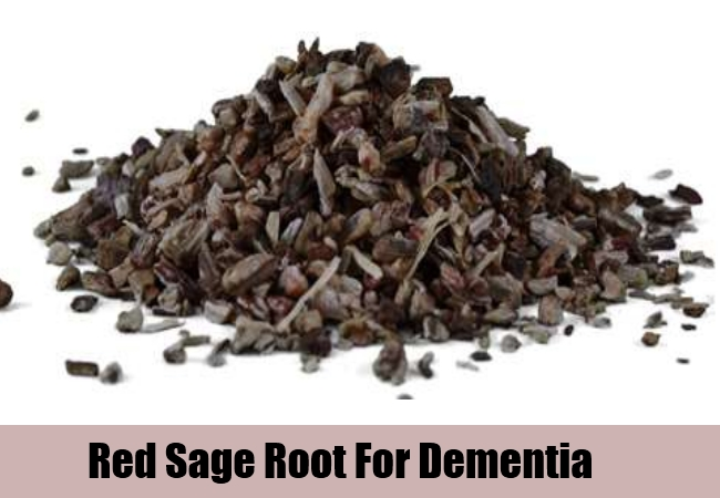 Red Sage Root