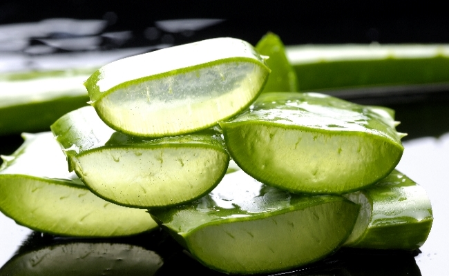 Use Of Aloe Vera