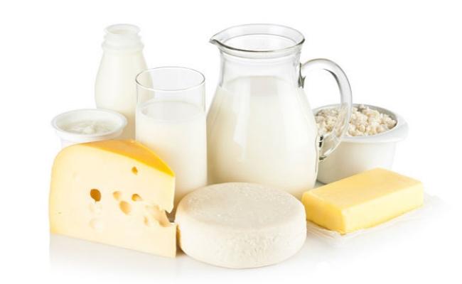 Milk and other dairy products make you fat