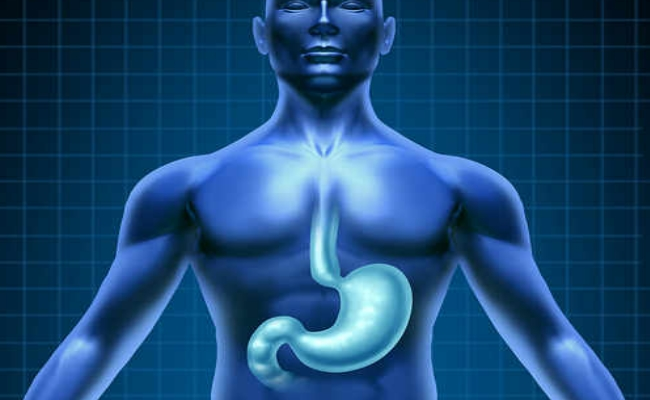 Improves Digestion (2)