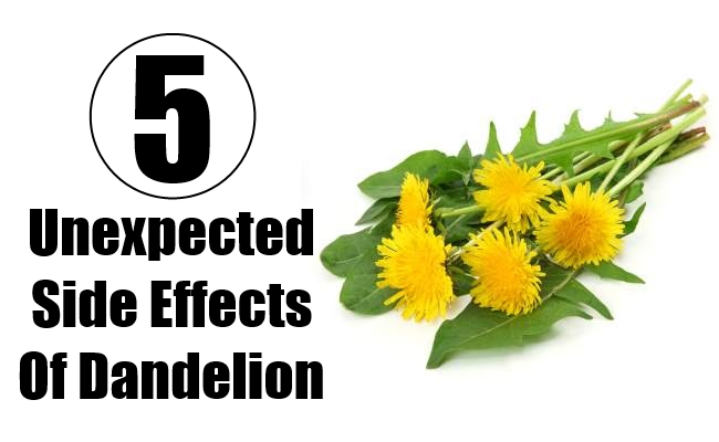 Unexpected Side Effects Of Dandelion