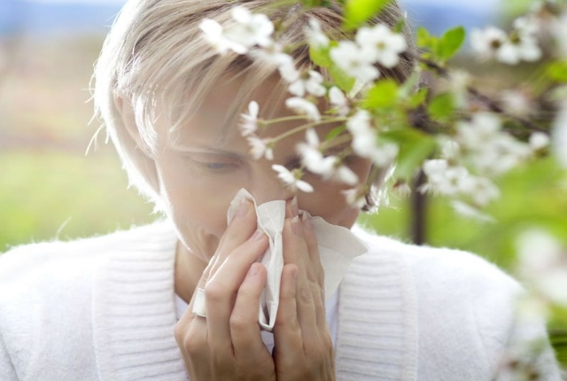 Natural Remedies Seasonal Allergies