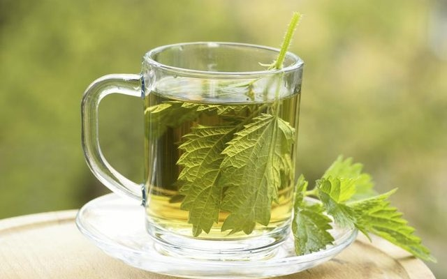 Nettle Leaves Tea