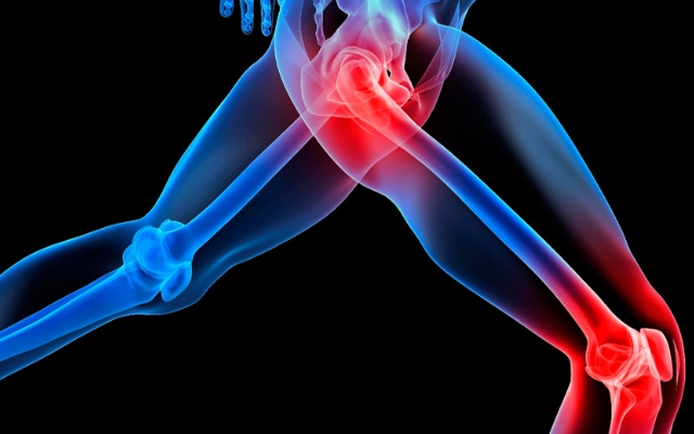 Use Burdock Root For Joint Pains