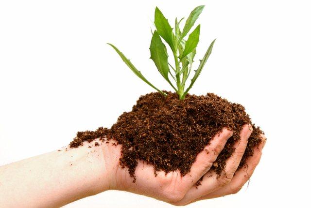 Use Of Natural Fertilisers