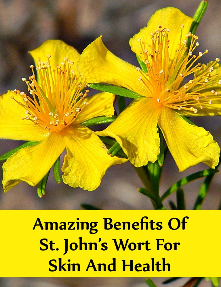 Benefits Of St. John's Wort For Skin And Health