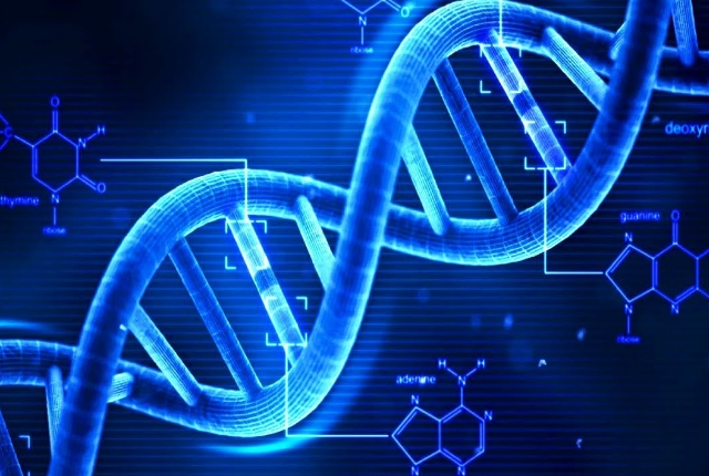 Genetic Inheritance