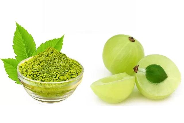 Indian Gooseberry And Henna Powder Hair Pack