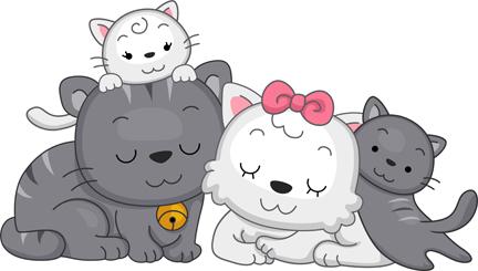 Animal Cat Family    Free Clipart   Illustration   Vector ... (432 x 245 Pixel)