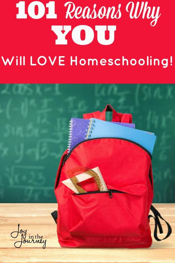Are you considering homeschooling? Not sure if it's for you? Check out these 101 reasons to consider homeschooling. These are real moms telling you WHY homeschooling rocks!