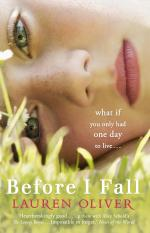 books becoming movies in 2017 before I fall