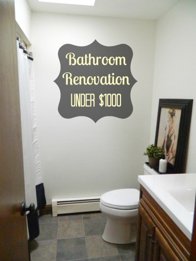 Bathroom renovation under 1,000