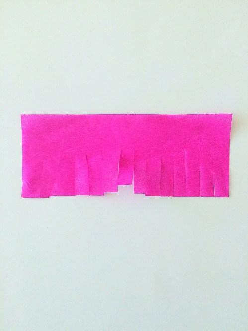 pink-fringe