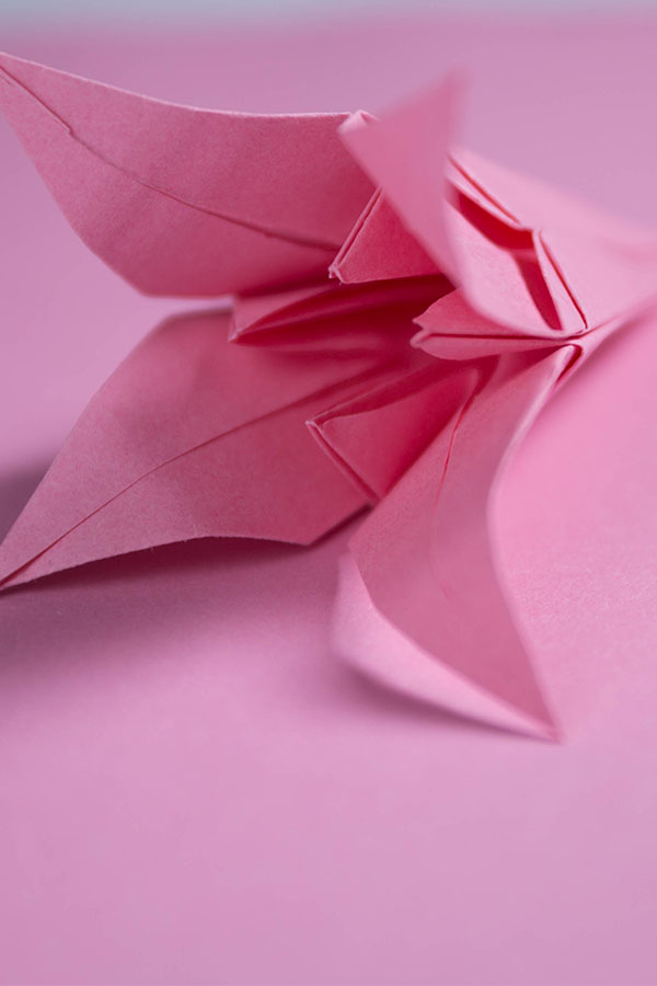 how to make lily origami
