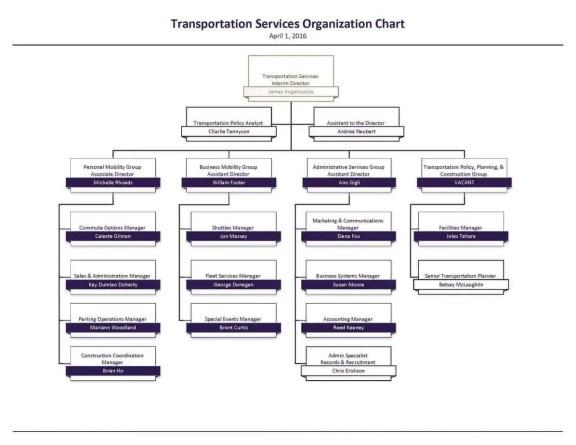 Organizational Chart Template 7