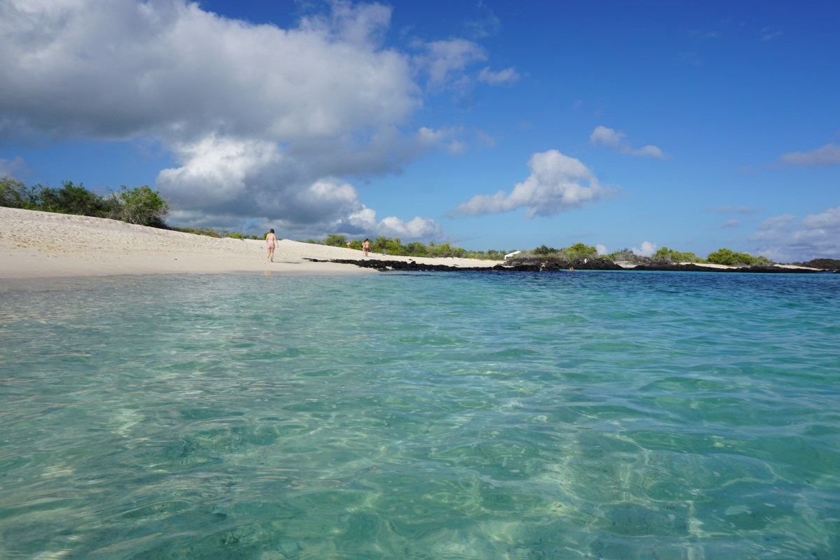 Cruising The Best Of The Galapagos Islands