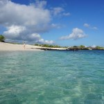 Snorkeling beautiful beaches in the Galapagos