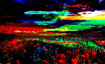 Digital Landscape Artist
