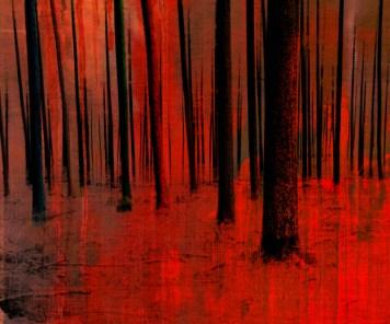 Gallery Landscape Art