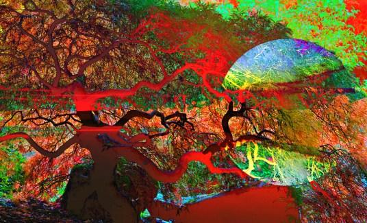 Art Landscape Abstract