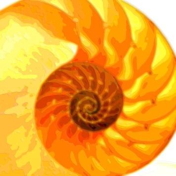 Golden Spiral Layer Art