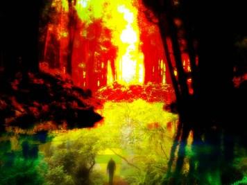Digital Art Image Galleries