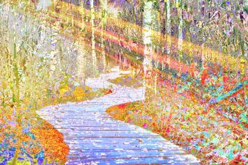 Sunny forest landscape art