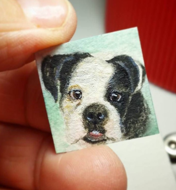 Mini pet portrait - Buster