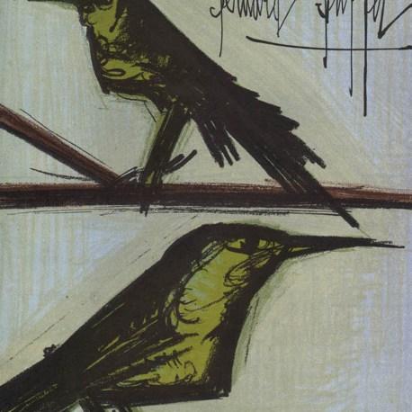 Buffet_Bird_couple