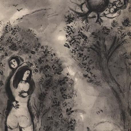 Chagall_V24_Le_crapaud