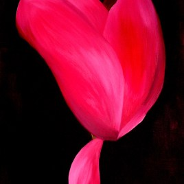 "Absi Grace, ""Cyclamen 2"""
