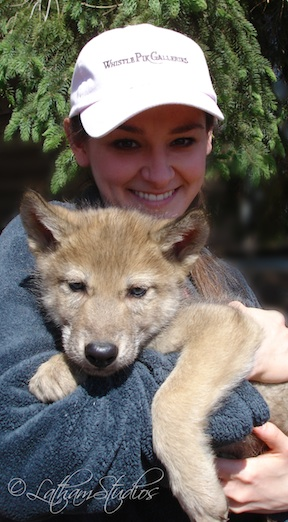 woman holding wolf pup