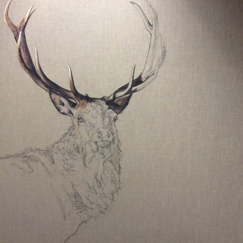 how to paint an awesome deer
