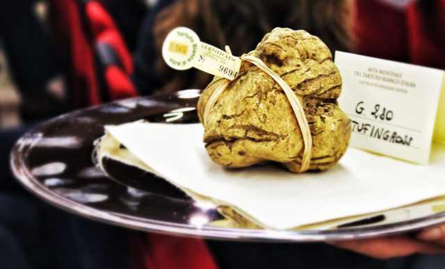 white-truffle-tray