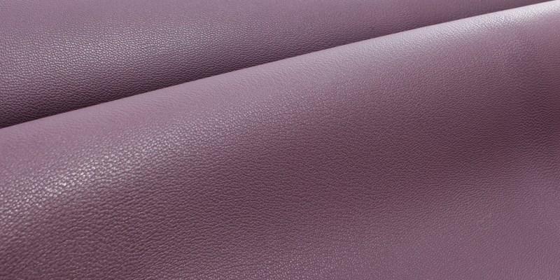 Chevre Leather Details