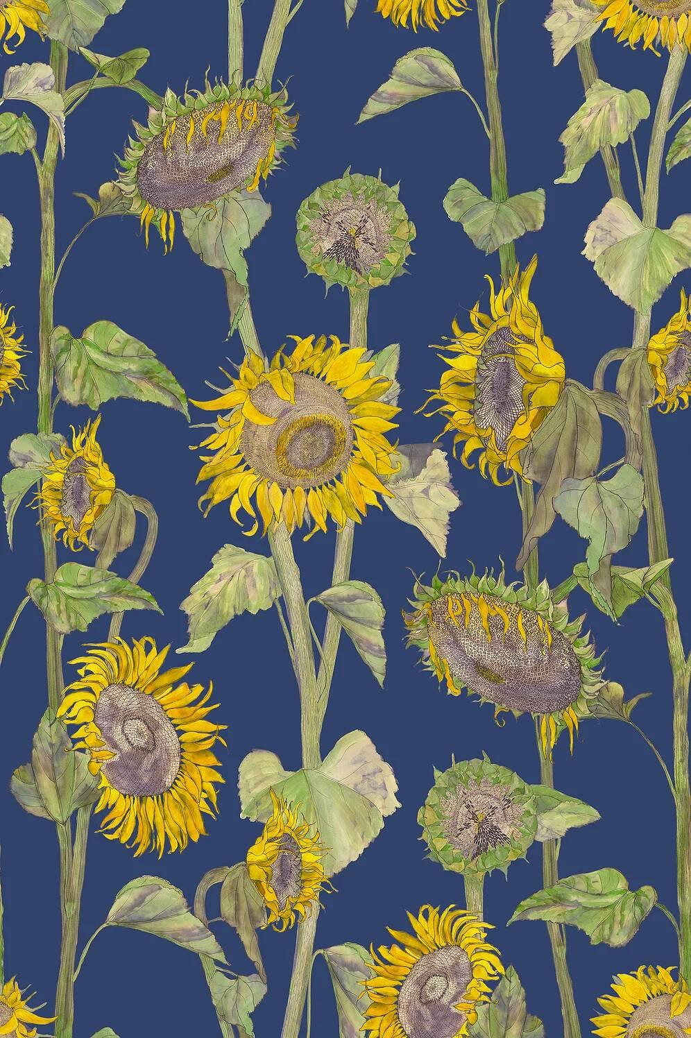 Petronella Hall Sunflower Wallpaper