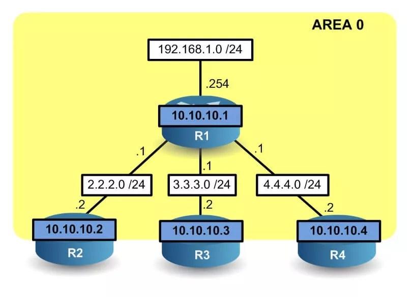 Le routeur R1 à trouvé les routeurs R2, R3 et R4 via la commande network