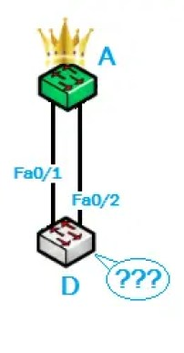 STP Protocol 1